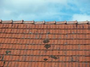 Vérification toiture extérieure